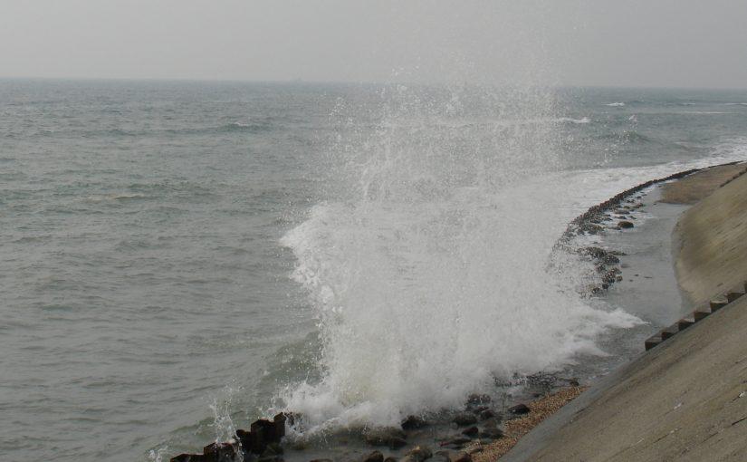 尋找海嘯中的救世主