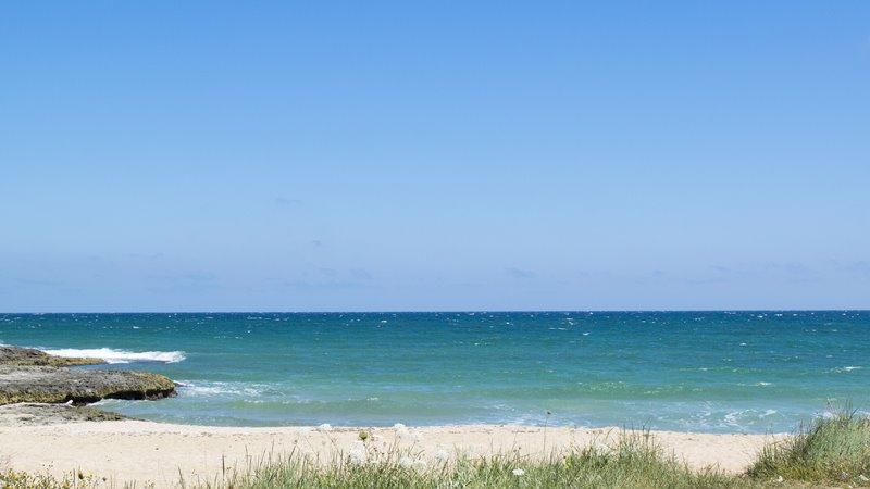 渴望大海的遼闊